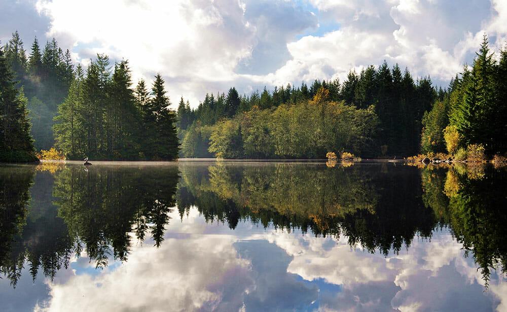 Озера Ванкувера, Rice Lake. Райс Лэйк
