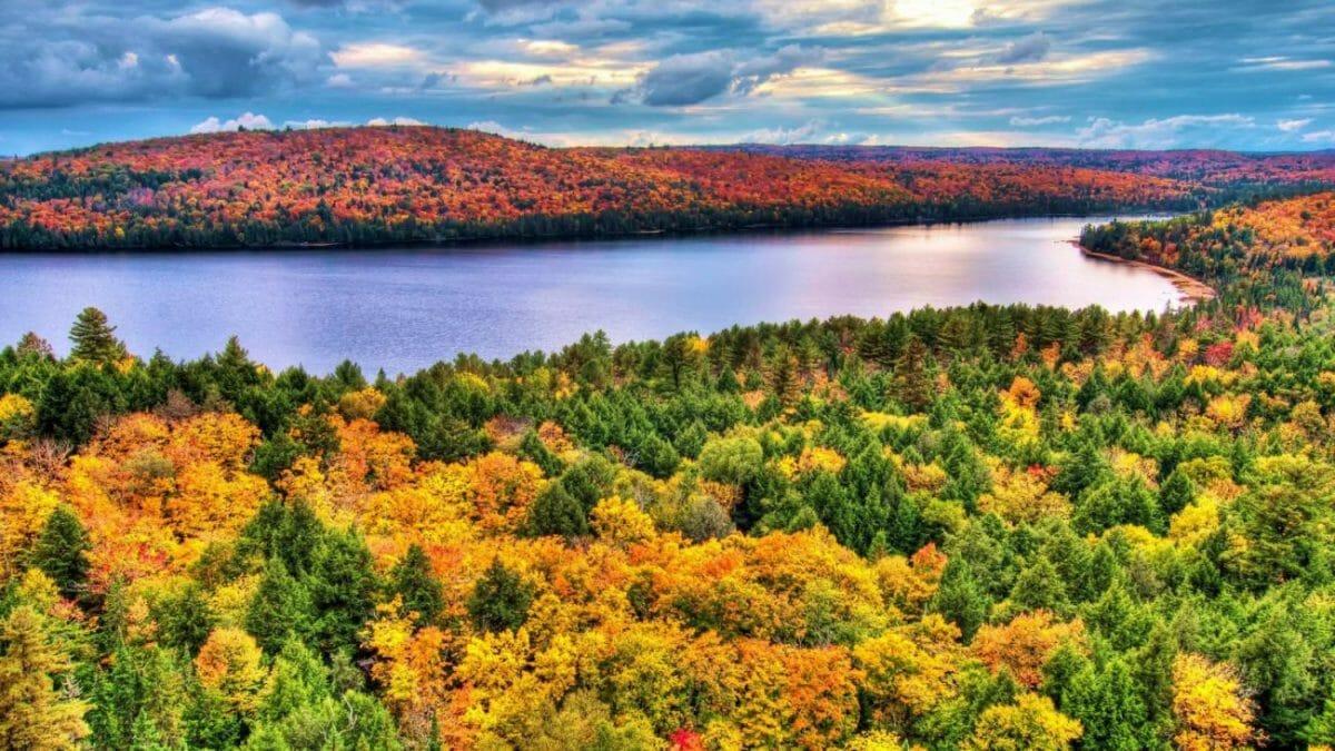 Algonquin Provincial Park autumn ontario, осень в Канаде, красота природы, Канада