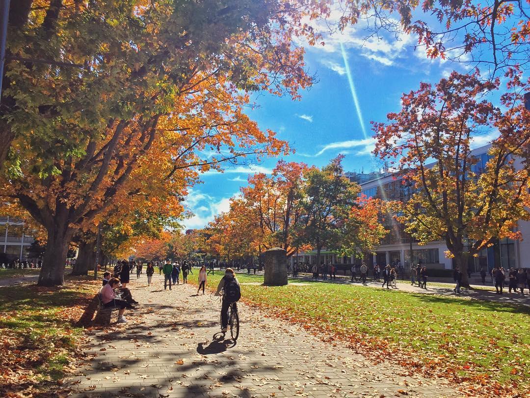 Осенний Ванкувер, Ванкувер осенью фото