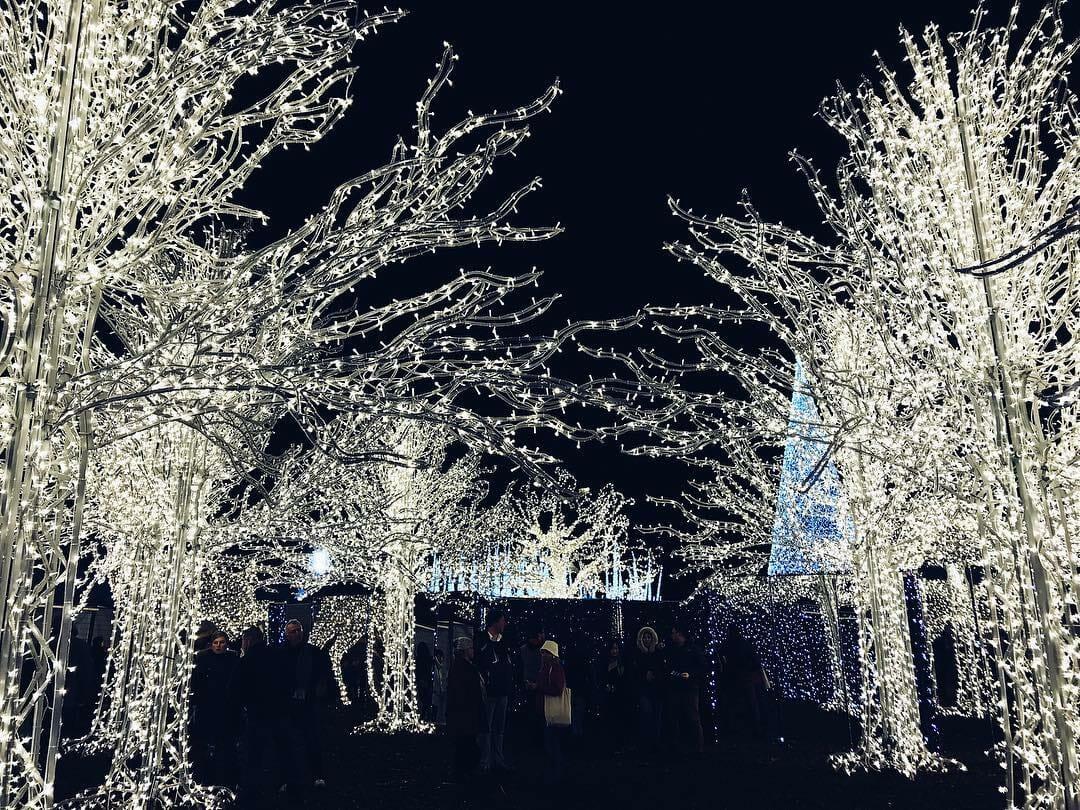 рождественский лабиринт света, световой лабиринт, Ванкувер Рождество, enchant christmas maze