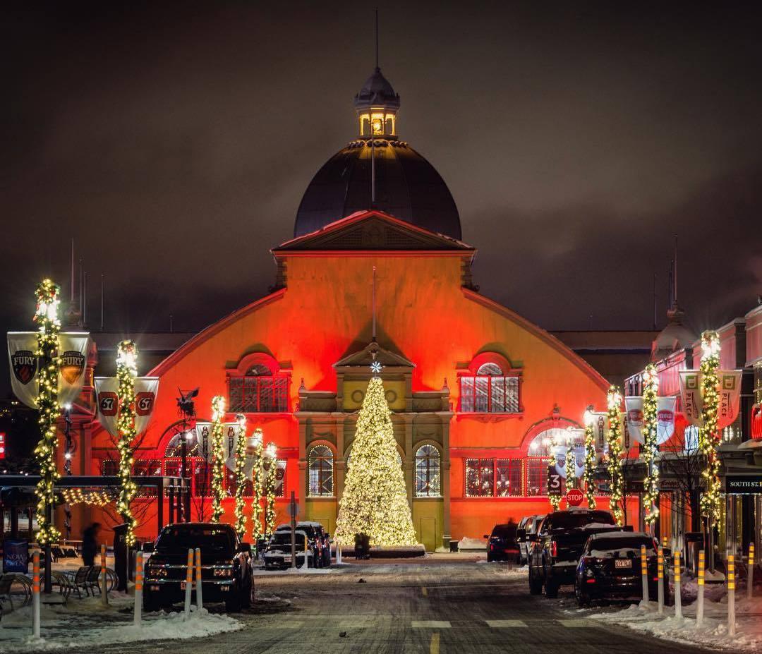 christmas tree Ottawa, Оттава Рождество, Оттава Канада