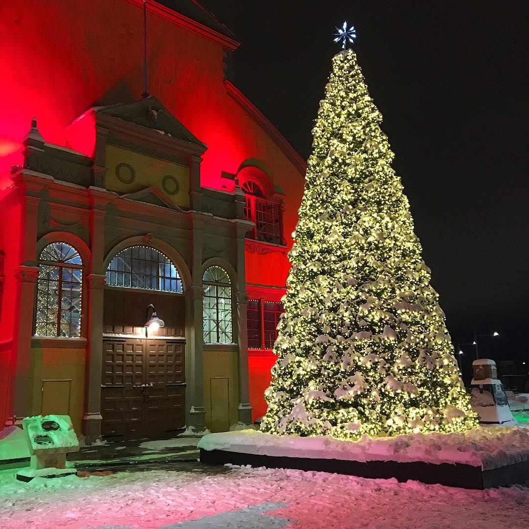 столица Канада, Оттава Рождество, елка Оттава,