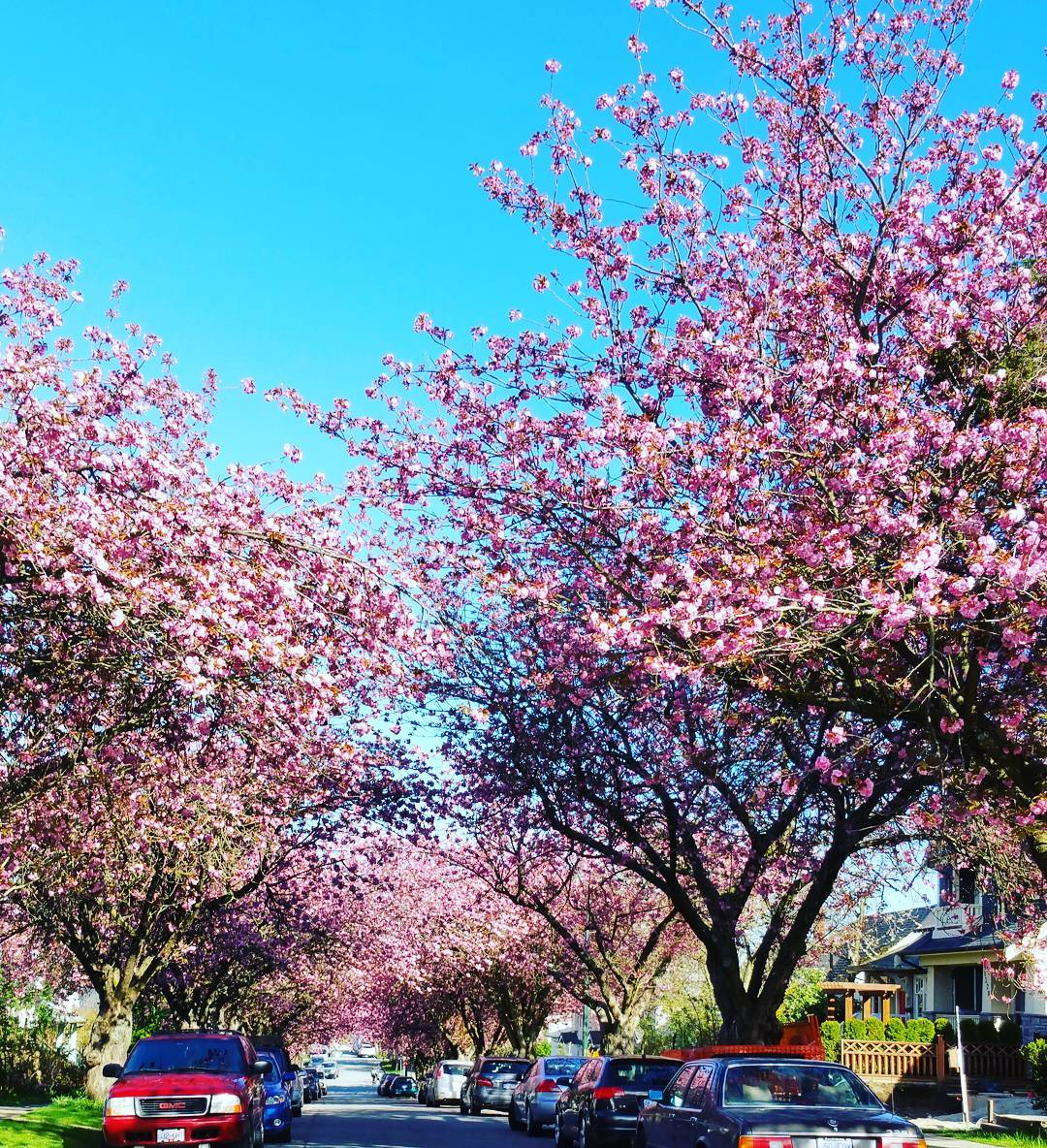 vancouver Canada spring