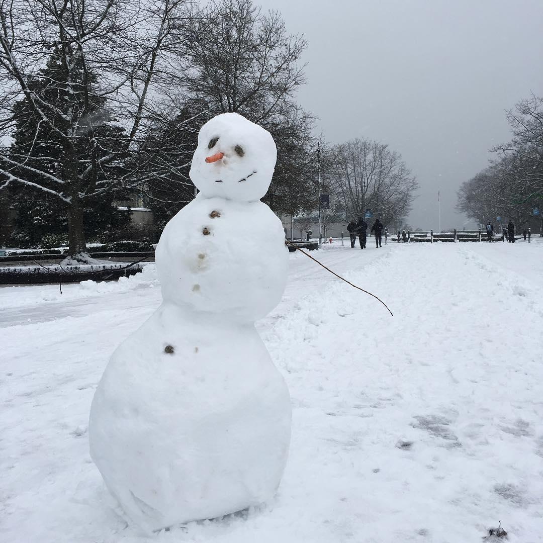 снеговик,ubc vancouver