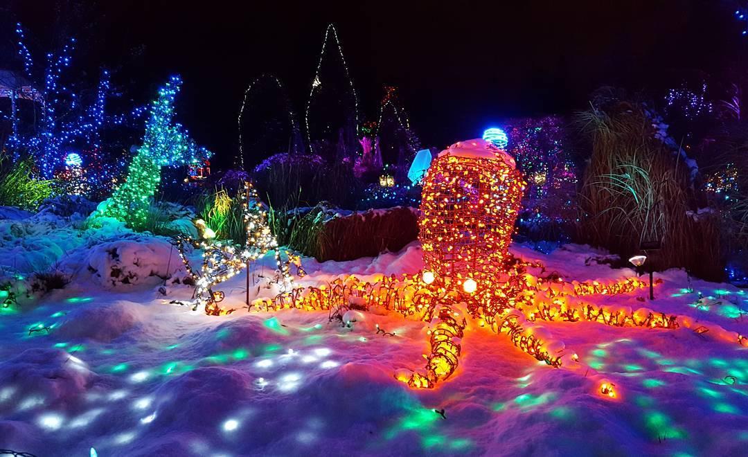 ботанический сад Ван Дусена зимой, фестиваль огней в саду
