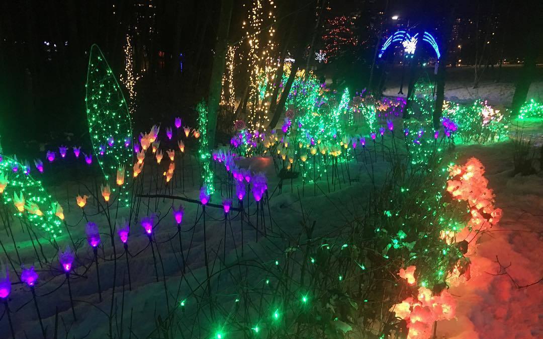 рождественские огни в Ванкувере, рождество Ванкувер, Канада
