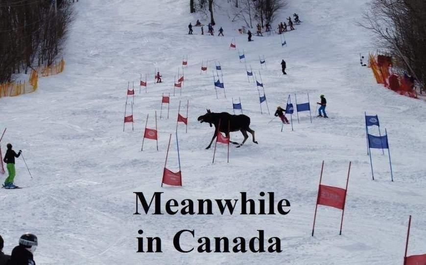 смешные фото, приколы о жизни в Канаде