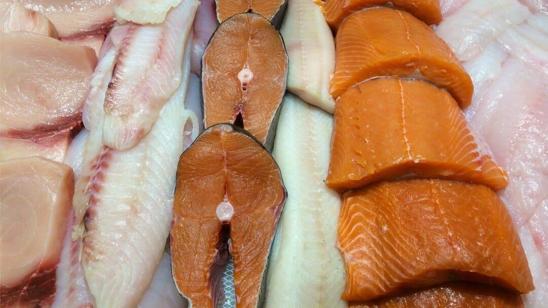гмо лосось, Канада, маркировка продуктов, нарушения, Европа, США