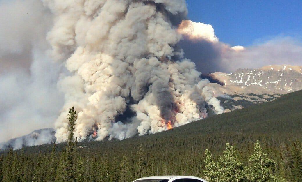 пик лесных пожаров в Канаде ожидают в июле