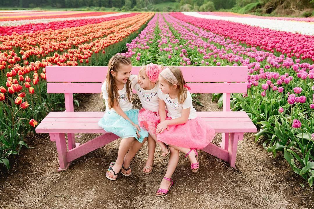 фестиваль тюльпанов в Абботсфорде