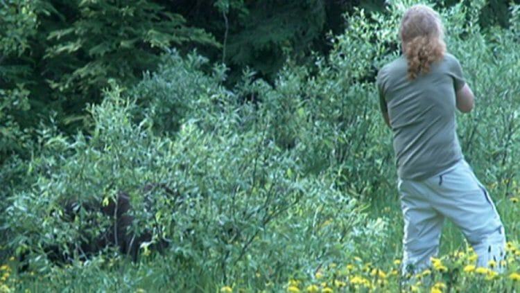 фотографируюет медведя слишком близко