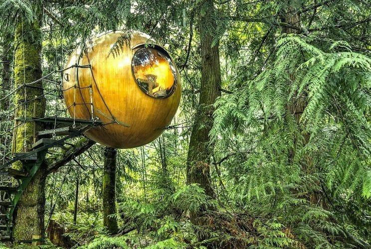 домики на деревьях, отели Канады
