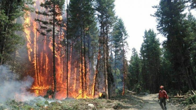 пожар в Британской Колумбии