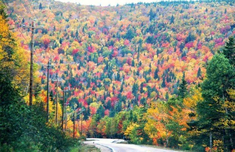осень в Канаде, Кейп Брентон