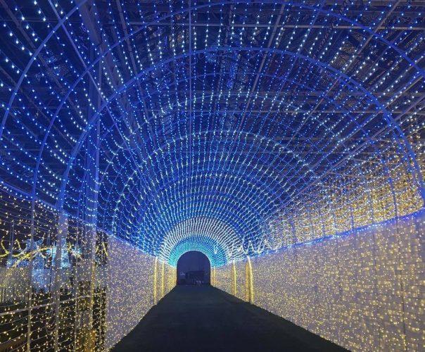 рождественское световое шоу Glow