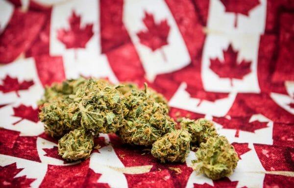 Канада марихуана