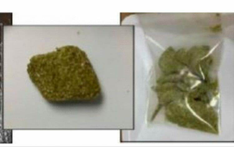 Токсична ли марихуана семена томатов для гидропоники купить