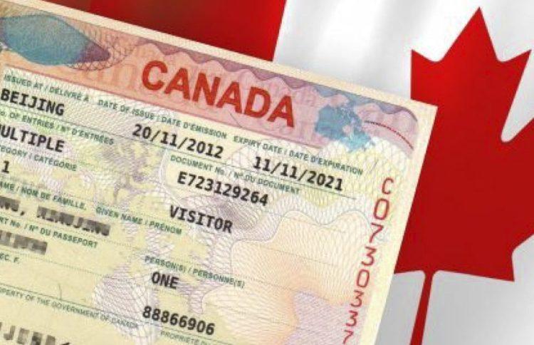 гостевая виза в Канаду