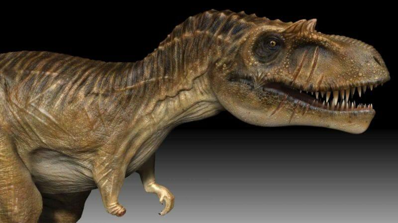 канада динозавры