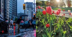 канада весна 2021