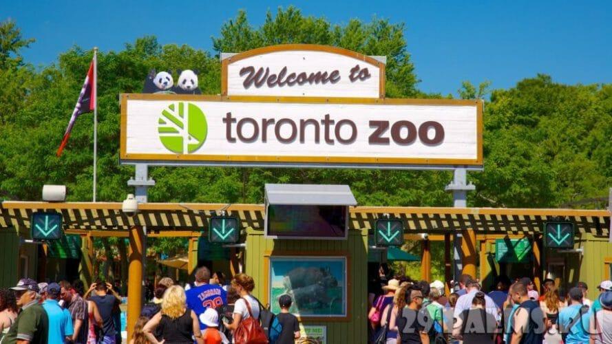 торонто зоопарк