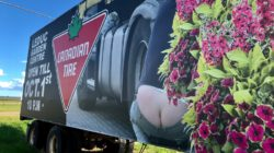 смешной билборд