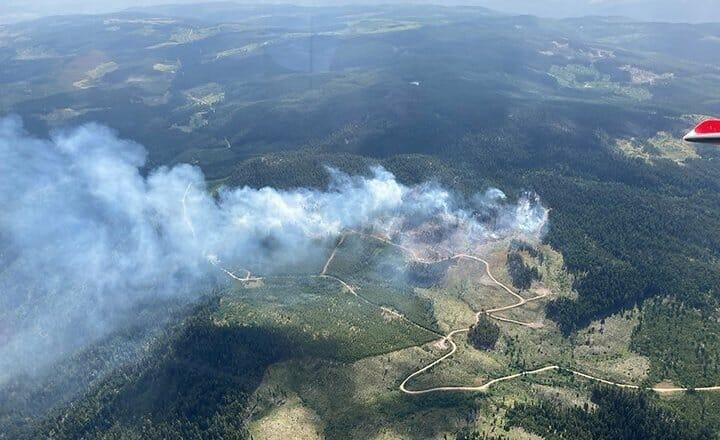 лесные пожары британская колумбия