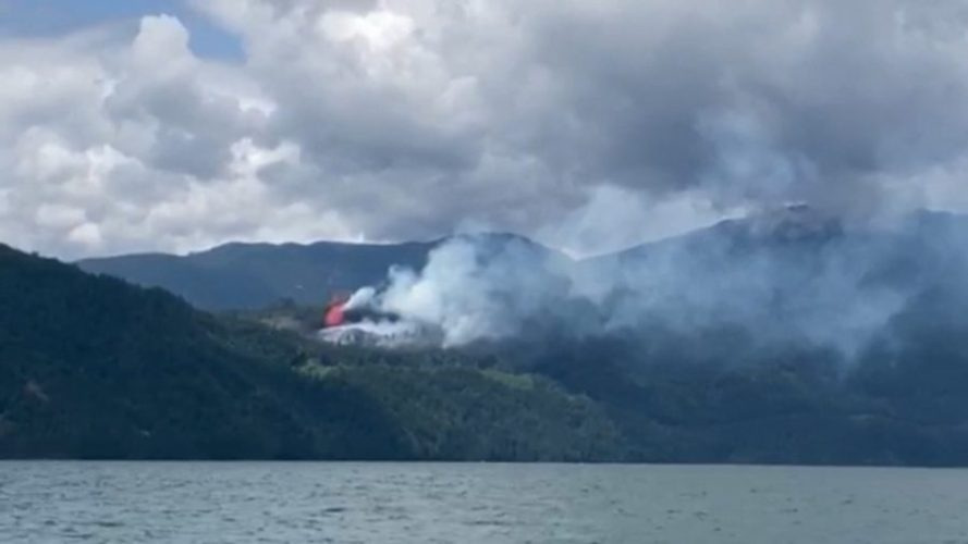 лесные пожары канада