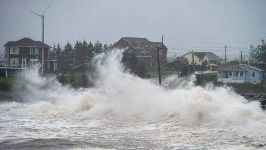 ураган тедди