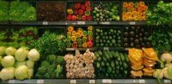 цены продукты канада