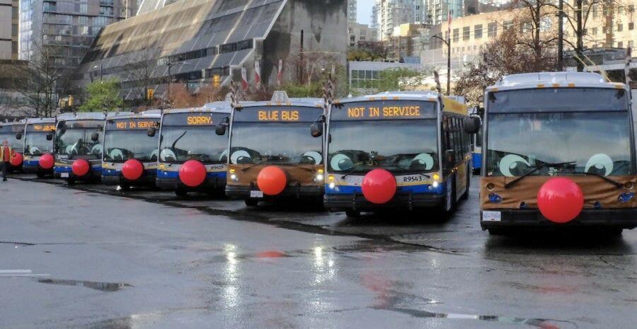 автобусы олени